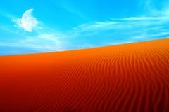 Wüste Stockfotografie