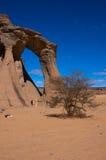 Wüste acacus libia Stockbild