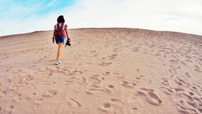 In Wüste allein gehen Stockfotografie