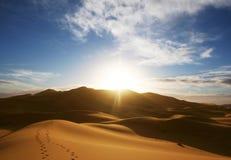 Wüste auf Sonnenuntergang lizenzfreie stockbilder