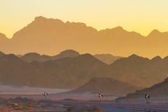 Wüste an der Dämmerung Lizenzfreies Stockfoto