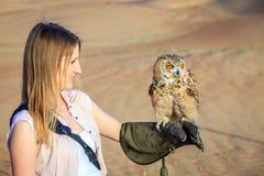 Wüste Eagle Owl im Training Lizenzfreies Stockbild