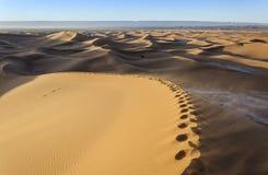 Wüste Hamada du Draa Marokko Lizenzfreie Stockfotografie