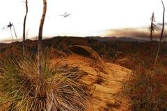 Wüste mit gelben Felsenanordnungen Stockbild