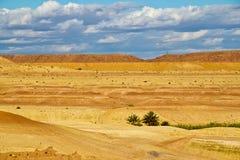 Wüste nahe AIT Benhaddou, Marokko Lizenzfreies Stockfoto