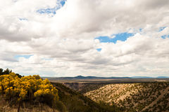 Wüste Vista Stockbild