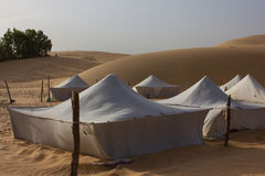 Wüste von Lompoul, Sahara, Senegal lizenzfreies stockfoto