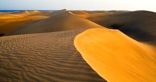 Wüste von Maspalomas in Gran C Stockbild