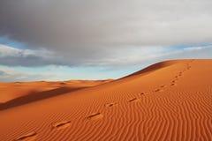 Wüsten Stockbild
