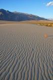 Wüsten-Ansicht lizenzfreie stockfotografie