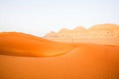 Wüsten-Ansicht Stockfoto