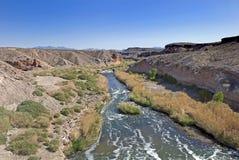 Wüsten-Fluss Stockfoto