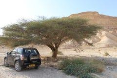 Wüsten-Jeep Stockfotos
