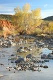 Wüsten-Nebenfluss im Herbst Stockfotografie