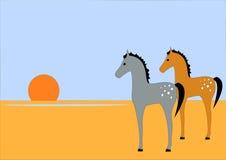 Wüsten-Pferde lizenzfreies stockbild