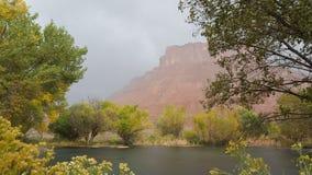 Wüsten-Regen Stockfotografie