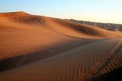 Wüsten-Safari Stockfoto