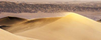 Wüsten-Sanddünen Stockfotos