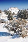 Wüsten-Schnee Lizenzfreies Stockfoto