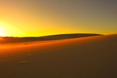 Wüsten-Sonnenuntergang Stockfotos