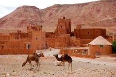 Wüsten-Stadt u. Kamele, Marokko Lizenzfreies Stockbild