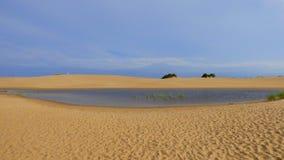 Wüsten-Teich Stockbilder