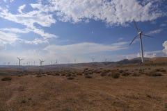 Wüsten-Turbinen Stockfoto