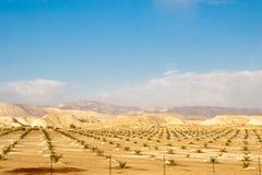Wüsten- und Gebirgslandschaft israel Lizenzfreie Stockfotos