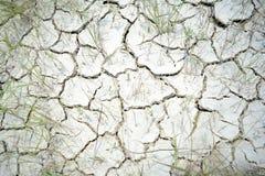 Wüstenbeschaffenheit stockbild