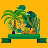 Wüstenblumen Exotische Anlage, Busch, Palme, Kaktusvektorsatz Stockfotos