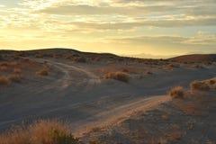Wüstendämmerung auf Schotterwegen Lizenzfreie Stockfotografie