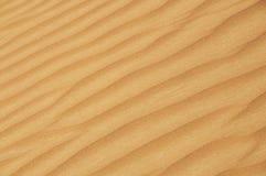 Wüstendünedetail Lizenzfreie Stockfotografie