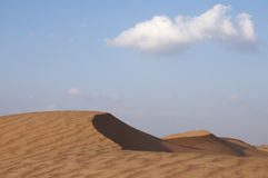 Wüstendünen Stockfotografie
