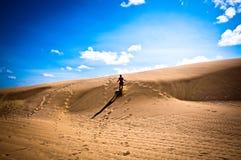 Wüstendünen Lizenzfreies Stockfoto