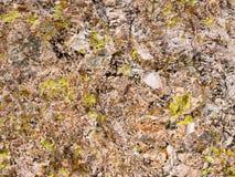 Wüstenfelsenfarben schaffen eine Zusammenfassung lizenzfreies stockfoto