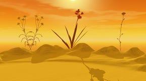 Wüstengelb und -blumen lizenzfreie abbildung