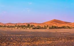 Wüstengrenze Stockfotografie