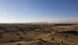 Wüstenland und -büsche Stockbild