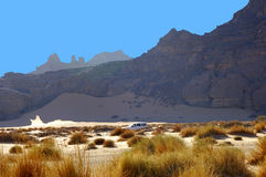 Wüstenlandschaft Stockfoto