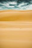 Wüstenlandschaft Stockfotografie