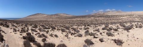 Wüstenlandschaft mit Bergen Lizenzfreie Stockfotos