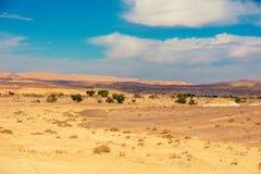 Wüstenlandschaft mit blauem Himmel stockfotos