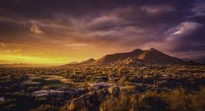 Wüstenlandschaft Scottsdale Arizona, USA stockfotos