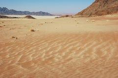 Wüstenlandschaften Stockbild