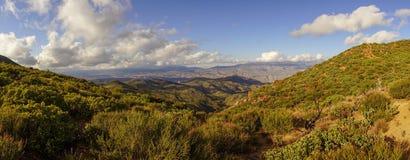 Wüstenpanoramalandschaft mit Fauna und Anlagen im Vordergrund lizenzfreies stockbild