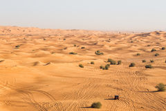 Wüstensafari in Dubai lizenzfreies stockbild