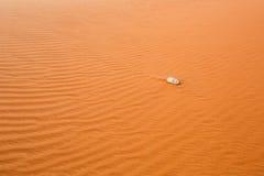 Wüstensand mit Stein Lizenzfreies Stockbild