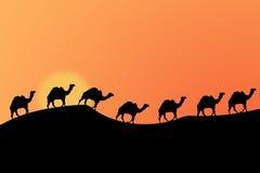 Wüstensonnenuntergang Lizenzfreies Stockfoto