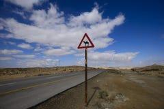 Wüstenstraße mit einem Kamelzeichen Lizenzfreies Stockbild
