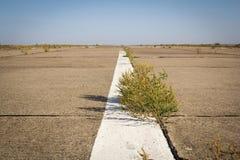 Wüstenstraße mit weißem Streifen lizenzfreie stockfotografie